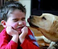 Un plus grand volume cérébral chez les garçons souffrant d'autisme régressif