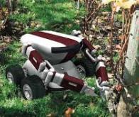 Un premier robot 100 % autonome remplace l'homme dans les vignes de Provence