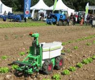 Un robot pour biner les salades