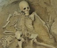 Un squelette de 2 millions d'années le «plus complet jamais découvert»