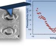 Un système piézoélectrique nanométrique