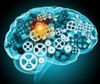 Un traitement prometteur pour les tumeurs cérébrales agressives