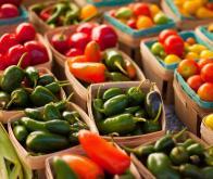 Une alimentation saine préserve l'autonomie au grand âge