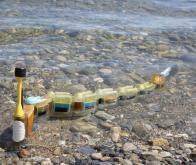 Une anguille robotique qui traque les sources de pollution dans l'eau