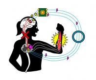 Une main paralysée retrouve sa mobilité grâce à des neurones artificiels