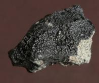 Une météorite martienne relance l'hypothèse d'une possible vie sur Mars