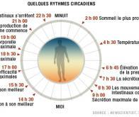Une molécule biologique qui cale son activité sur les cycles circadiens
