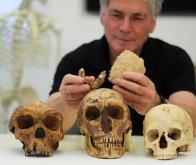 Une nouvelle espèce d'homme préhistorique peut-être découverte en Israël