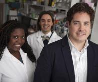 Une nouvelle voie thérapeutique majeure contre le cancer