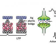 Une synapse artificielle  à l'essai !