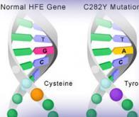 Utiliser les anomalies génétiques contre le cancer