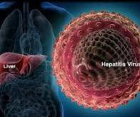 Vers un vaccin efficace contre les hépatites B et C