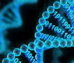 Le stockage biologique de données va accélérer la convergence entre numérique et sciences de la vie