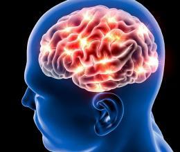 Troubles psychiatriques et maladies neurodégénératives : une base biologique commune ?