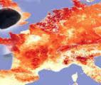 Accroissement du bétail : un facteur pandémique mondial