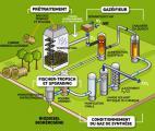 Biocarburants de deuxième génération : la voie lignocellulosique