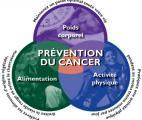 Cancer : le poids du mode de vie se confirme...