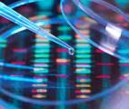Cancer : une mutation entrave l'organisation des gènes en 3D