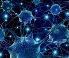 Chaque puce d'Intel sera bientôt un processeur à réseau neuronal