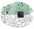 Décoder des signaux cérébraux à la vitesse de la perception