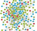 Découverte d'un lien génétique entre l'autisme et la maladie d'Alzheimer