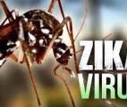 Des chercheurs dévoilent la structure complète d'une protéine essentielle du virus Zika