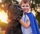 Des chiens formés pour aider les diabétiques grâce à leur odorat
