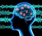 Des ondes cérébrales indiquent la perception d'un changement par le cerveau