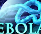EBOLA : l'Humanité doit faire face aux nouveaux virus