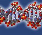La connaissance scientifique bascule dans une nouvelle ère : la vie recréée