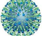Grippe : un nouveau médicament à large spectre va être testé