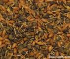 La consommation régulière de grains entiers et de fibres réduirait les risques de diabète et de cancer du côlon