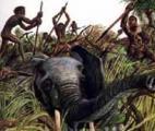 La mutation génétique qui a fait de nos ancêtres de redoutables chasseurs…