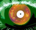La reconnaissance oculaire atteint un niveau presque parfait