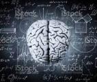 Le traitement des mathématiques dans le cerveau éclairé par les neurotransmetteurs