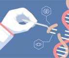 L'édition de gènes pour créer de nouvelles cellules rétiniennes