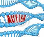 Les bases génétiques de l'autisme se révèlent peu à peu