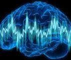 Les crises d'épilepsie dépendraient de l'horloge biologique