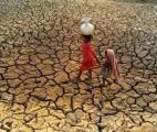 Les épisodes de sécheresse seront de plus en plus intenses en France
