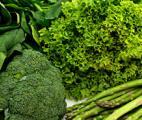 Les légumes verts pourraient retarder le déclin cérébral