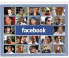 Les réseaux sociaux, principale source d'intérêt des internautes