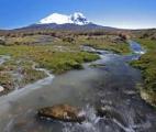 Les rivières glaciaires capables d'absorber plus de CO2 que la forêt amazonienne