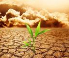 Limiter le réchauffement global à 2 degrés ne serait pas suffisant pour éviter une rupture climatique majeure