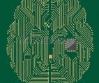 Première cartographie complète d'un circuit cérébral