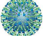 Prévoir les épidémies de grippe grâce à la génomique