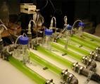 Produire de l'hydrogène à partir de biomasse