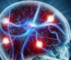 Quand deux protéines conjuguent leurs efforts pour détruire notre cerveau