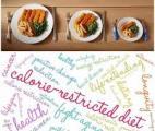 Restriction calorique chez des sujets jeunes : un effet métabolique positif