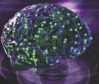 Un dispositif sans fil ni batterie pour contrôler les neurones avec la lumière