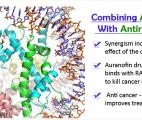 Un médicament anti-cancer -boosté- par un antirhumatismal